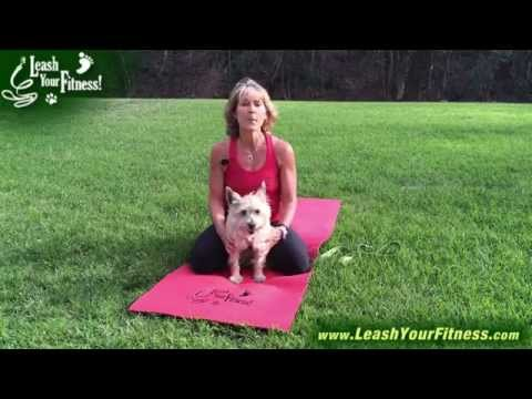 How To Start Your Own Dog Yoga Class