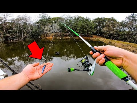 Catch MORE Fish in Winter w/ these **SECRET** Tips!!