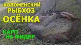 Зимняя рыбалка в осенках коломенский район