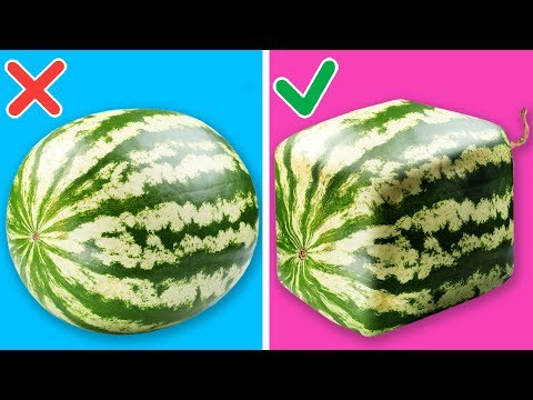 15 UNBELIEVABLE WATERMELON HACKS THAT ARE ACTUALLY QUITE EASY