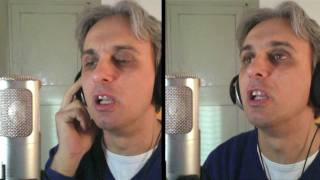 How to sing a cover of Dr Robert Beatles Vocal Harmony