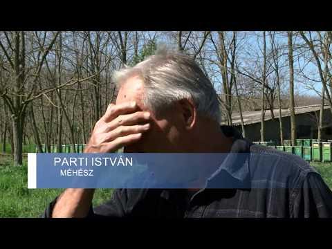 paraziták kivonása a test felülvizsgálatából
