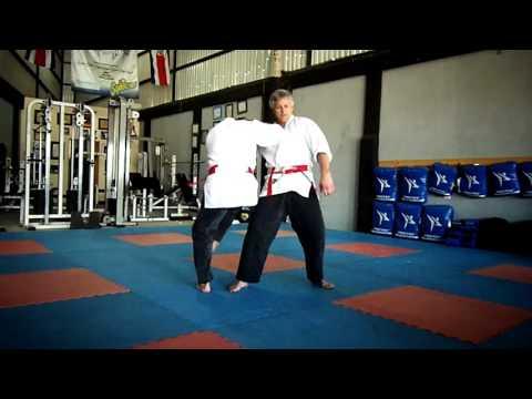 Danzan Ryu Jujitsu - Shinnin Techniques