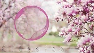 Primavera (Spring) - Vivaldi - As Quatro Estações (Le Quattro Stagioni - Four Seasons)
