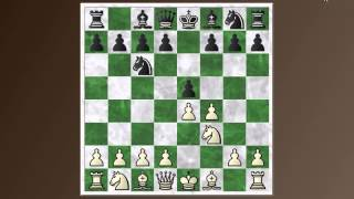 Opening Basics #16: King's gambit declined and Falkbeer counter-gambit