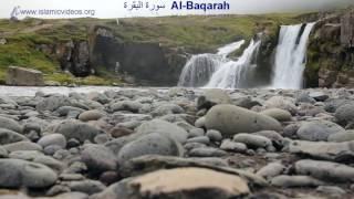 Surah Baqarah, 1 of the World's Best Quran Recitation in 50+ Languages