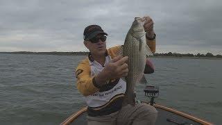 Southwest Outdoors Report #35 Lake Lewisville, Texas Hybrid Striper Fishing - 2013