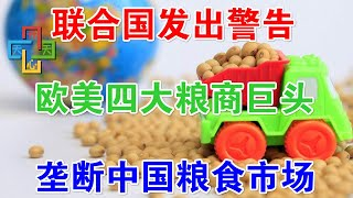 联合国发出警告!欧美四大粮商巨头,垄断中国粮食市场