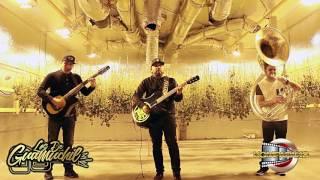 Los De Guamuchil- No Somo De Acero [Cover En Vivo] Corridos 2017