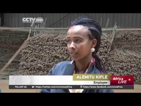Ethiopian entrepreneurs are using bamboo to make finished goods