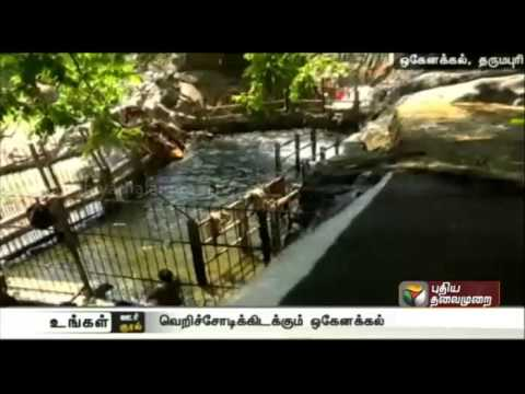 Tourists-inflow-to-Hogenakkal-reduces-as-oarsmen-stage-frequent-protests