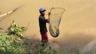 Cần Thủ Tranh Nhau Giật Cá Khủng Trên Sông Đồng Nai, Cá Gì Mà Khủng Khiếp :)