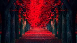Sinai (Original Mix) - Ilan Bluestone