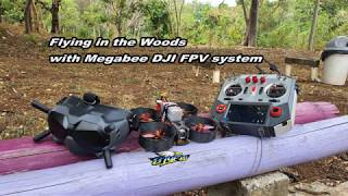 Flying 3inch iFLight Megabee DJI FPV System in the Woods