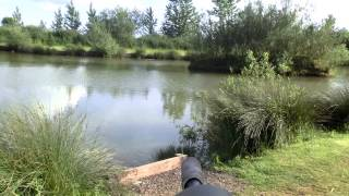 Air Rifle Hunting Rabbits At The Fishing Lakes