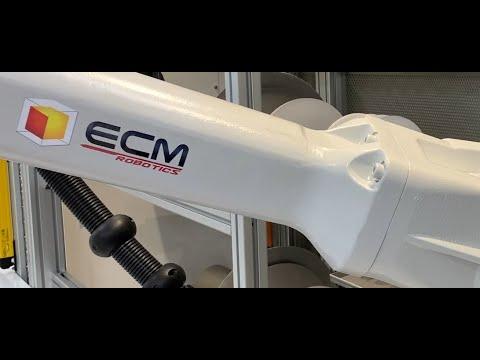 ECM Robotics