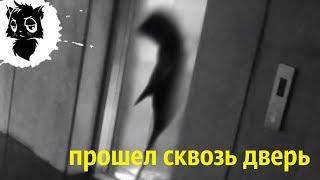 5 МУТАНТОВ С СУПЕРСИЛОЙ СНЯТЫХ НА КАМЕРУ [Черный кот]