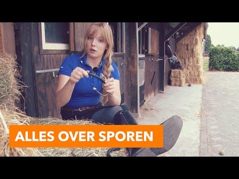 Alles over sporen   PaardenpraatTV