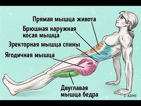 Средства от боли в спине мышцах и суставах