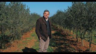 Nessun modello olivicolo è da escludere. Tutti i sistemi di allevamento possibili vanno sperimentati