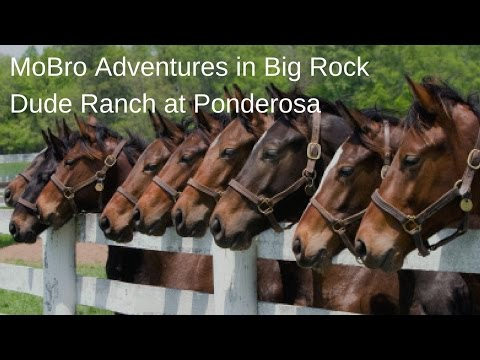 Big Rock Dude Ranch at Ponderosa Adventures