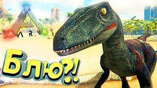 РАПТОРЫ И АКРОКАНТОЗАВР - Парк Динозавров - ARK Survival Evolved #2