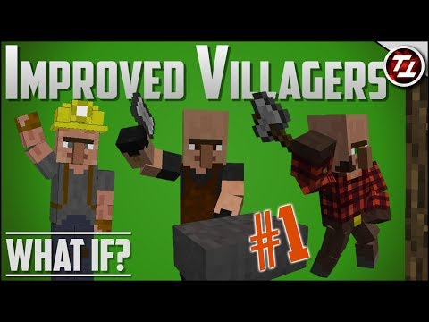 What If Minecraft had MUCH Better Villagers?