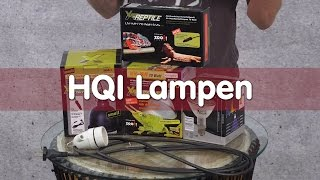Reptil TV - Technik - HQI Lampen