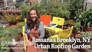 Rossana's Brooklyn NY Urban Rooftop Garden