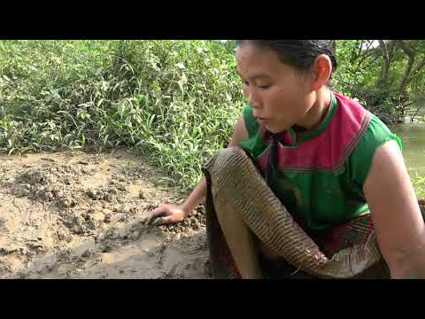 Build Fish Trap From Deep Hole Catch Big Fish - Unique Hand Fishing In Dry Season