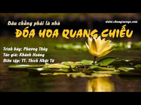 Đóa hoa Quang Chiếu