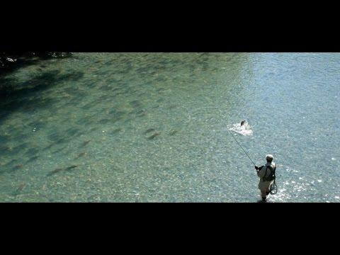 Atkul che pesca nellestate