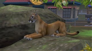 Zoo Tycoon 2: Endangered Species Campaign - Photo Safari - The Cat Sanctuary