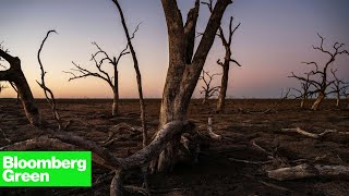 The Vanishing Water of the Murray-Darling Basin