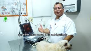 Uma das Clínicas Veterinárias mais completas de Manaus.