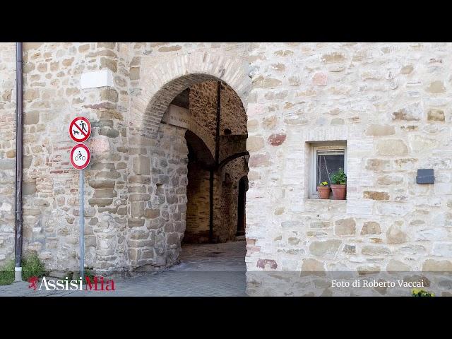La Pianura di Assisi
