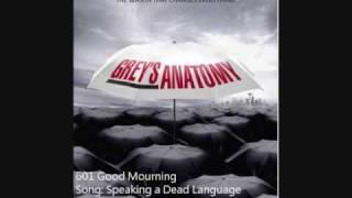 601 Joy Williams - Speaking a Dead Language