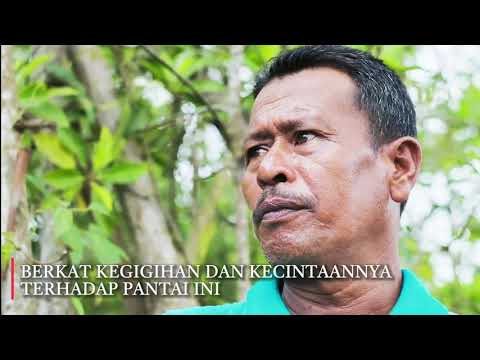 Wisata Sumatera Utara, Program Konservasi dan Pariwisata Merubah Wajah Kelam Pantai Sejarah Batubara