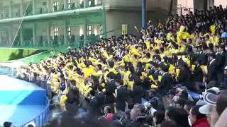 帝京高校 アフリカンシンフォニー