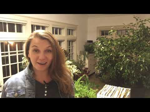 🌴 Houseplants Moving ~ Indoor Jungle ~ Studio Tour ~ Y Garden 🌴
