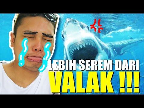 Video DIVING DI TENGAH IKAN HIU ! | Seaworld Ancol