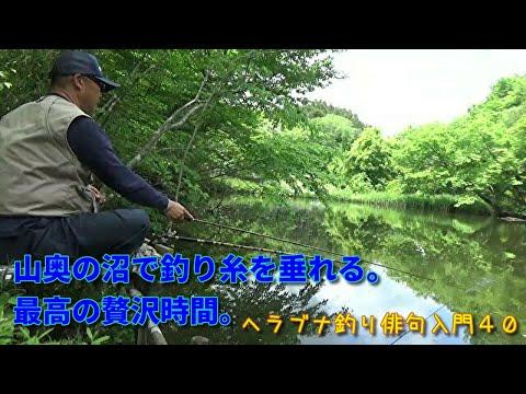 山奥の沼で大きなヘラブナの手ごたえを感じる。ヘラブナ釣り俳句入門<紀行40>です。