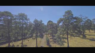 ReelSteady GO Cinematic Drone FPV Tres Marías (4K) I