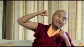 Stop aapdenken, mediteer jij ook ?