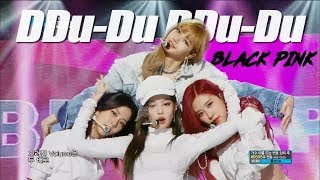 [HOT] BLACKPINK    DDU DU DDU DU , 블랙핑크   뚜두뚜두   Show Music Core 20180630