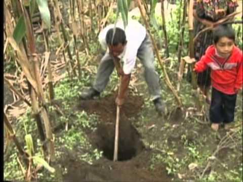 Agua y Saneamiento: Disposición de excretas. Programa 11