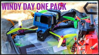 Windy Day One Pack #fpvfreestyle #emuflight #fpv