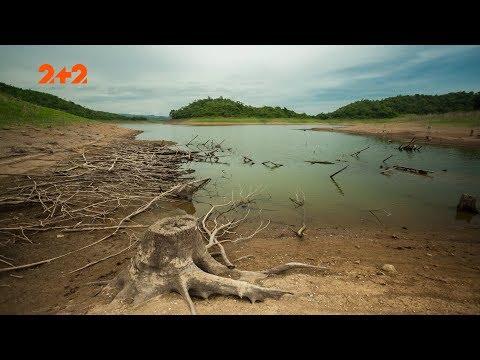 Яких легендарних гігантів знайшли у джунглях Амазонії