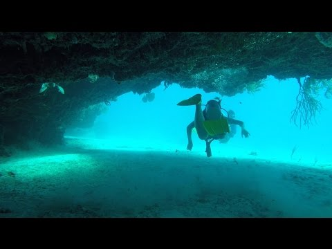 Riu Yucatan Mexico Scuba Caribe Diving – BEST DIVE at Sabalos