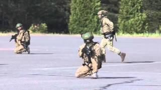 На полигоне «Альфы» прошли учения тактических групп спецподразделения СБУ